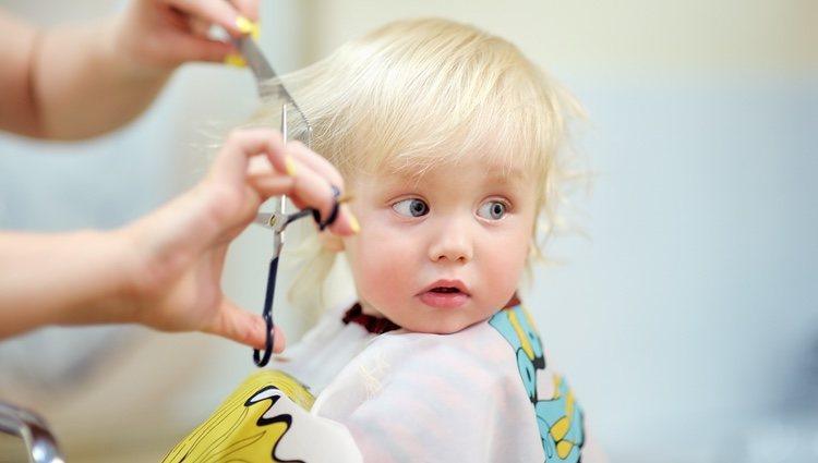 Cuando son muy pequeños tienen el pelo muy fino y es mejor llevarlo corto