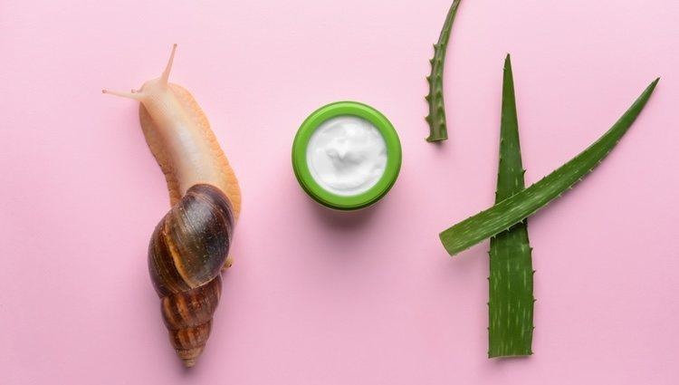Innumerables cremas han surgido con la baba del caracol