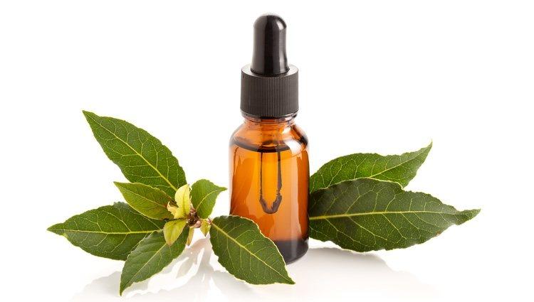El ámbar posee un olor muy característico en los perfumes