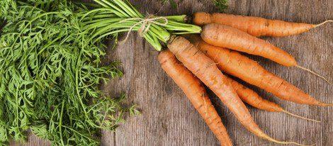 La zanahoria es uno de los alimentos más ricos en vitamina A