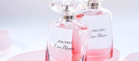 El frasco tiene efectos degradados en rosa