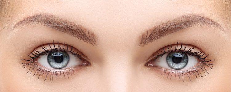Las cejas son uno de los rasgos que más personalidad aportan al rostro