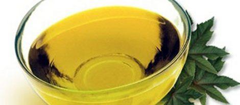 El aceite de jojoba hidrata la piel y evita la caída del cabello
