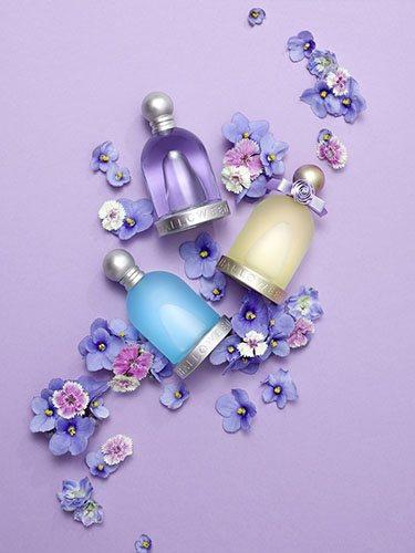 A lo largo de los años, Halloween Perfumes ha lanzado varias nuevas ediciones