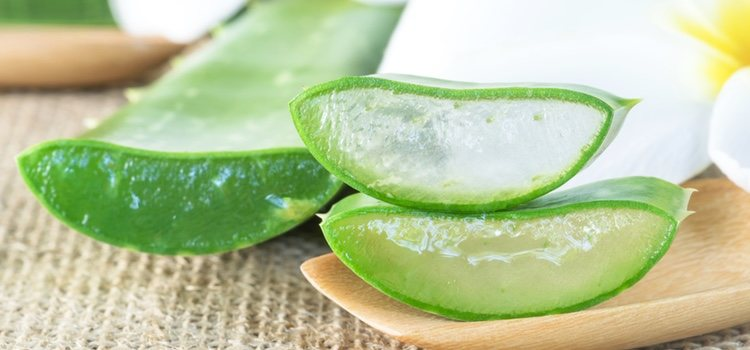 El aloe vera elimina las células muertas y ayuda a la regeneración de la piel