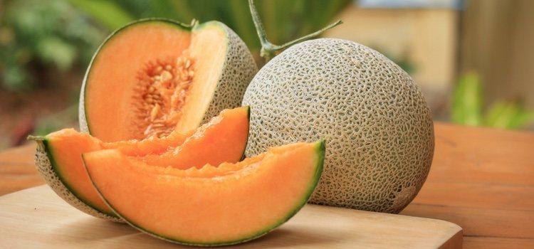 El melón cantalupo, uno de los más populares