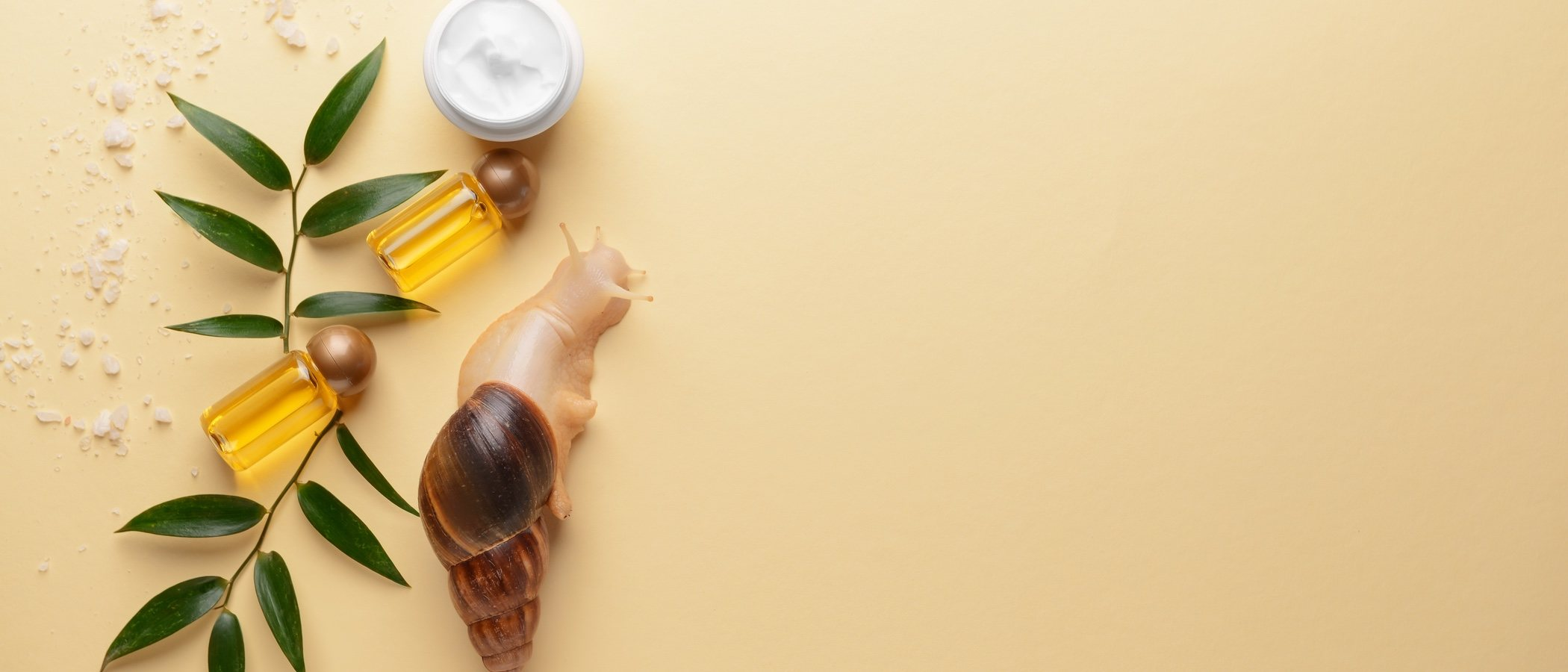 Reduce manchas y retrasa el envejecimiento con baba de caracol