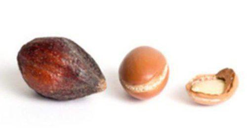 Las propiedades del aceite de argán: el mejor aliado en tratamientos de belleza corporal