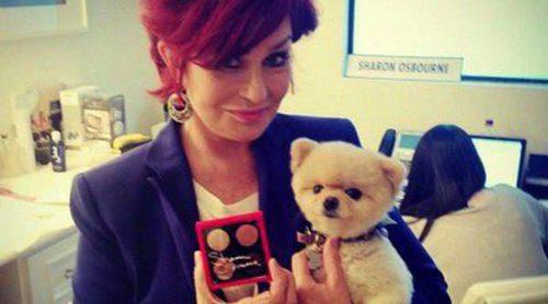 Kelly y Sharon Osbourne lanzarán una colección de maquillaje en colaboración con MAC
