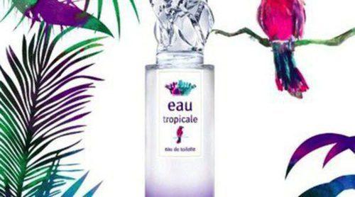 Descubre la fragancia más fresca del verano: 'Eau Tropicale' de Sisley