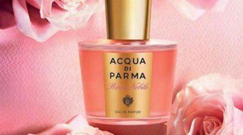 Acqua Di Parma lanza 'Rosa Nobile', una fragancia elegante dedicada a la rosa