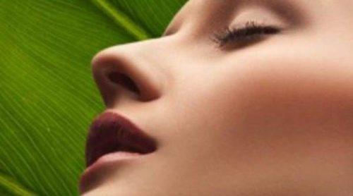 Moxitoterapia: la terapia japonesa para restablecer el equilibrio de cuerpo y mente