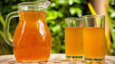 Los beneficios del té Kombucha