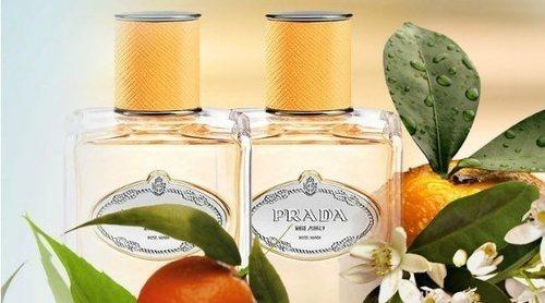 Prada sorprende con un aroma cítrico en su nuevo perfume 'Les Infusions de Prada Mandarine'