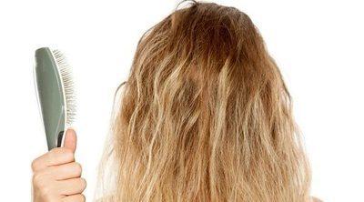 ¿Por qué se reseca el pelo?