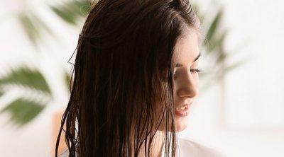 Consejos de belleza: evita el pelo seco en verano