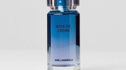'Les Parfum Matieres': el cedro y la orquídea, protagonistas de las nuevas propuestas olfativas del Kaiser