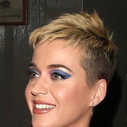 Katy Perry opta por un gloss marrón