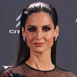 Ariadne Artiles apuesta por el peinado 'efecto wet'